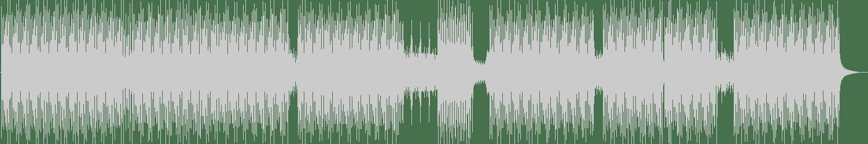 MTD - Motion (Original Mix) [Sonntag Morgen] Waveform