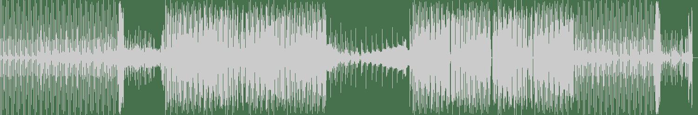 Devon James, ICYMI - Mini Gun (Original Mix) [Audiophile XXL] Waveform