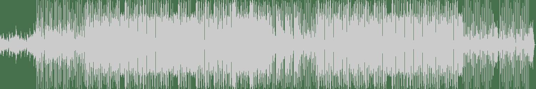 Nitri - Cracker (Original Mix) [Chronic] Waveform