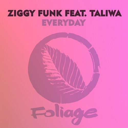 Everyday (Yass Classic Mix) by Ziggy Funk, Taliwa on Beatport