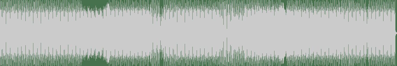 Toru S. - Acieeed Smell (Original Mix) [Nohashi Records] Waveform