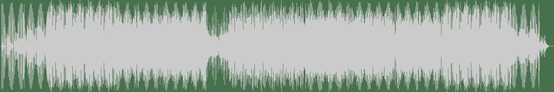 Darren Diamond - Split (Original Mix) [Rodeo Drive Records] Waveform