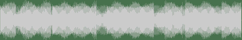 Rove Ranger - Metrik (Original Mix) [Android Muziq] Waveform
