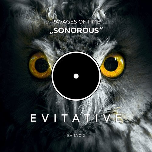 Ravages of Time - Sonorous Image
