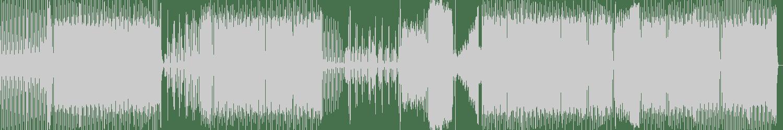PokyTwins - Work (Original Mix) [DNZ Records] Waveform