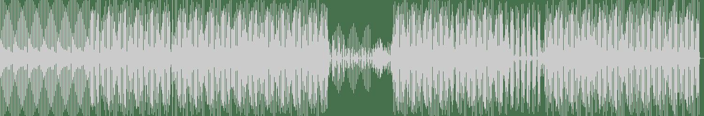 Roog, Dennis Quin - Igohart feat. Berget Lewis (VIP Mix) [Madhouse Records] Waveform