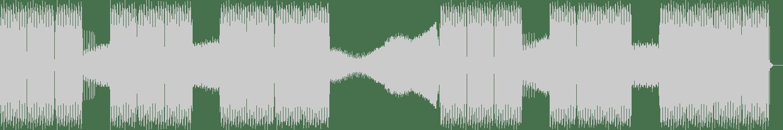 Amir Razanica - Sitting in the Darkness (Luix Spectrum Remix) [Free Spirit Records] Waveform