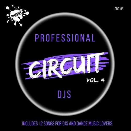 Professional Circuit Djs Compilation, Vol. 4