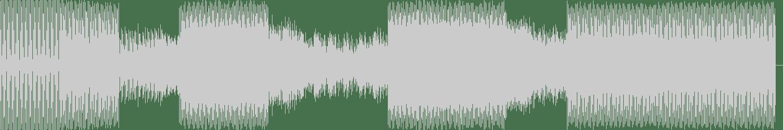 Neil Daruwala, Jonno & Gibson - Enter (Original Mix) [Naked Lunch] Waveform