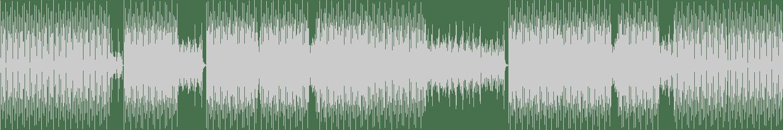 Len Vitz - Bass n Soul (Original Mix) [Deep Tech Records] Waveform