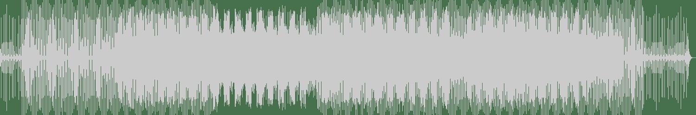 Spieltape - Lonely Places I've Never Been (Original Mix) [Proton Music] Waveform