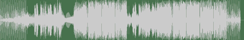 Don Diablo, Kiiara - You're Not Alone (feat. Kiiara) (Extended Mix) [Parametric] Waveform