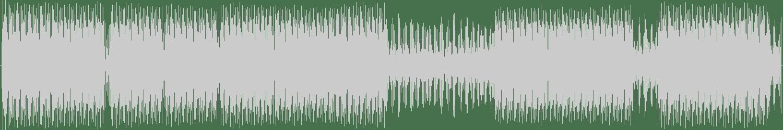 Net Son - Erkölcsi (Kristian Remix) [Delude Records] Waveform