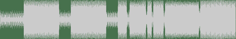 DJ Nehpets - Come On, Ho! (Original Mix) [Public Housing] Waveform