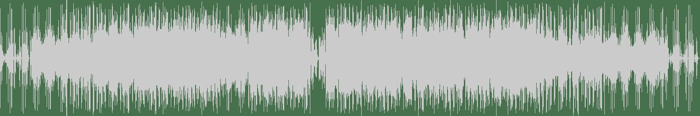 Scott & Leon, SYLVIA MASON - You Used to Hold Me (Original Mix) [NIP N TUCK] Waveform