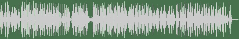 Isolee - Allowance (Original Mix) [Pampa Records] Waveform