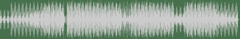 The Journey Men - That Vibe (Original Mix) [No Fuss Records] Waveform