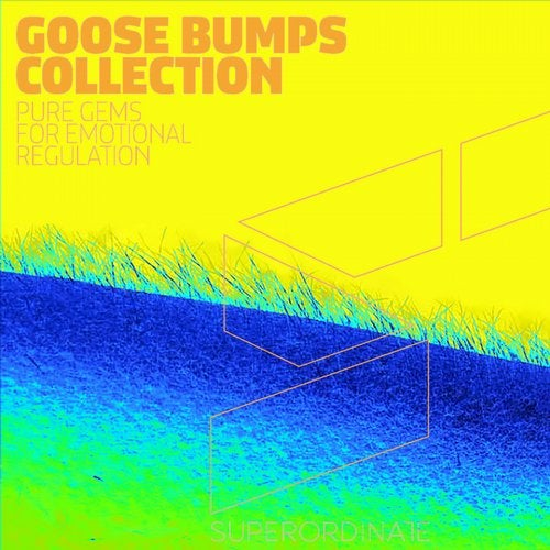 Goose Bumps Collection