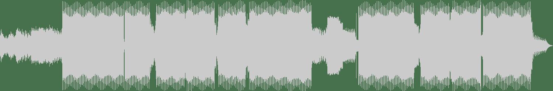 Faders - Fractals (Original Mix) [TechSafari Records] Waveform