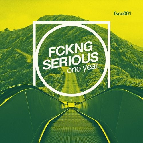 Fckng Serious - One Year