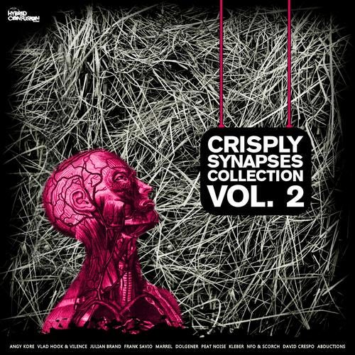 Crisply Synapses Collection Volume 2 from Hybrid Confusion