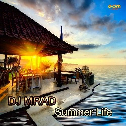 Summer Life               Original Mix