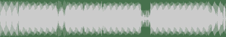 DJ Raid - Tribute To Tribus (Original Mix) [Simplex Records] Waveform