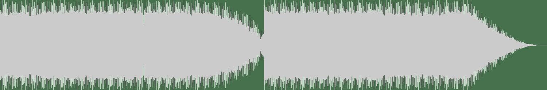 Spherical Coordinates - SCFLS-12 (Original Mix) [Token] Waveform