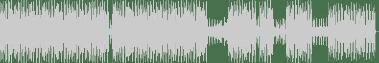 Terence Fixmer, Cormac - Lovesick (Monoloc Rmx 0.0.1) [CLR] Waveform