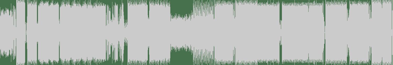 The Braindrillerz - Acr (Original Mix) [Infractive Digital] Waveform