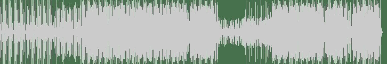 Ronald Franklin - Capturing Light (Ultra Filter Mix) [Ultrasonik] Waveform