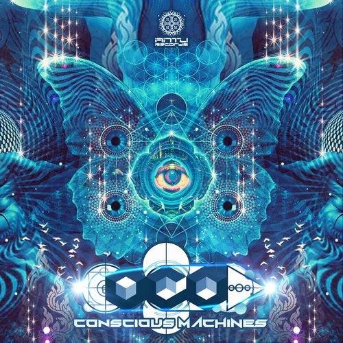 Conscious Machines