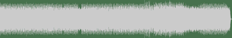 DJ Speedsick - Even Further Down The Spiral (Original Mix) [BANK Records NYC] Waveform