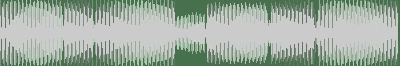 Misstress Barbara - Burning (Original Mix) [Play My Track Recordings] Waveform