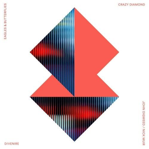 Crazy Diamond / Divenire
