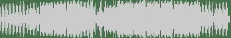 Asylum, Random But Raw - Delinquent (Original Mix) [LW Recordings] Waveform
