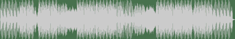 Ruze - Ciranda (Original Mix) [Toolroom] Waveform