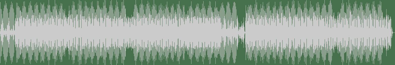 Roman Lindau - Now (Original Mix) [Fachwerk Digital] Waveform