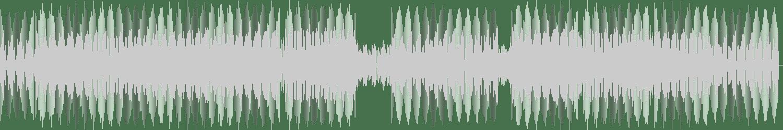 DJ Linus - Rise (Original Mix) [Variety Music] Waveform
