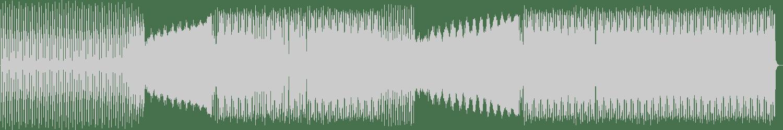Peter Paul - Causes Main (Reload) (Original Mix) [N-Mitysound Records] Waveform