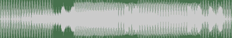 D.h.p. - Hallucinogenic Substances (Original Mix) [U-Ground Milano] Waveform