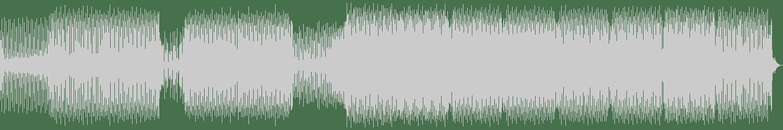 Sizemoreism - Dune Buggy (Eric Cadillac Remix) [Disolend Records] Waveform