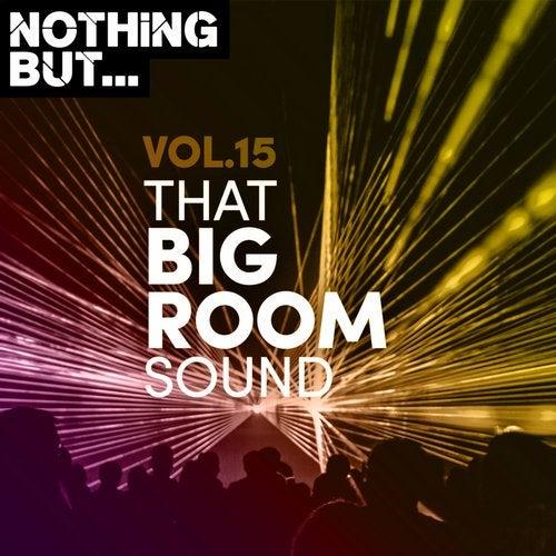 VA - Nothing But... That Big Room Sound, Vol. 15 [NBTBRS15]