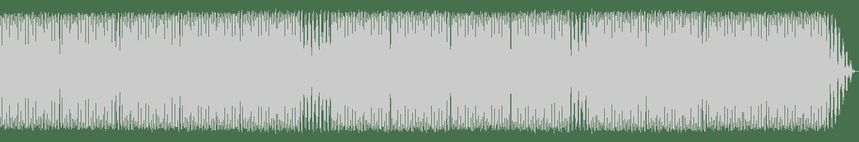 Steve Lorenz - Engine 2 (Original Mix) [Snork Enterprises] Waveform