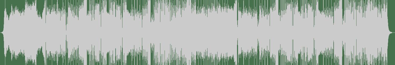 Ivory - Next Level (Original Mix) [Never Say Die Records] Waveform