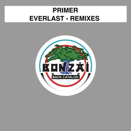 Everlast - Remixes