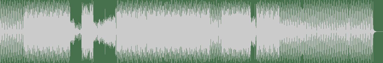 Nick Martira - Wote (Level Mix) [A B P] Waveform