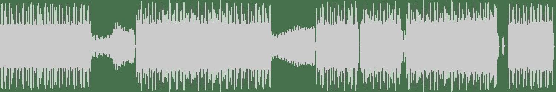 DJ Haus - Too Much Data (DJ Boneyard Remix) [Dance Trax] Waveform