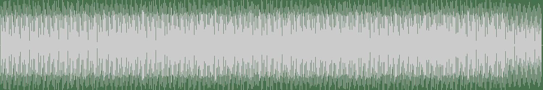Green Velvet, Jamie Principle - LaLaLaLaLa (Original Mix) [Relief] Waveform