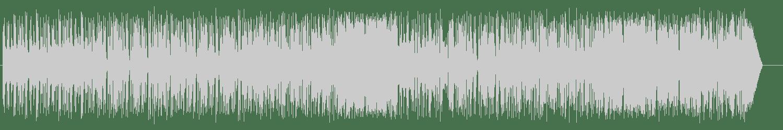 Orchestra Volare - Se ritornerai (Original Mix) [Irma Records] Waveform
